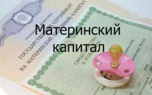 Собственника Обанкротили Материнский Капитал