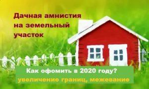 Межевание земельного участка бесплатно по дачной амнистии как сделать 2020