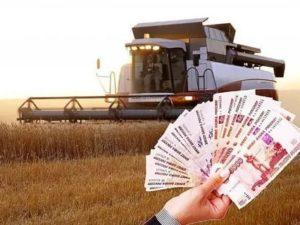 Как получить деньги на развитие сельского хозяйства от государства 2020