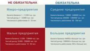 Обязательный аудит для ооо в 2020 году критерии штрафы и основания