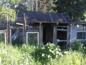 Закон о заброшенных дачных участках в 2020 году