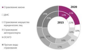 Новые виды страхования которых нет на российском рынке 2020