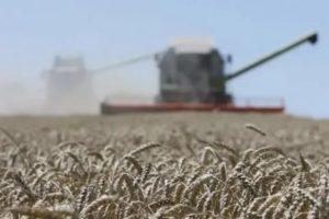 Закон о земле сельхозназначения 2020