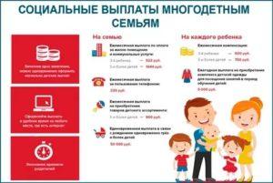 Льготы и гарантии многодетным семьям в ярославле в 2019 году