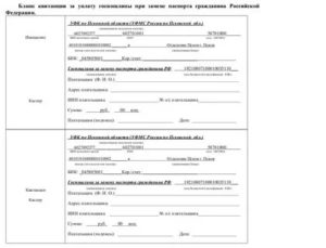 Госпошлина За Замену Паспорта В 45 Лет В 2020 Году Квитанция Реквизиты