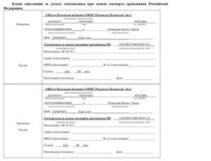 Госпошлина За Замену Паспорта В 45 Лет В 2020 Году Квитанция Спб