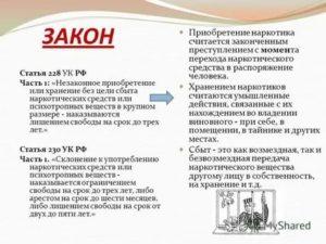 Поправки По Статье 228 Часть 4 2020