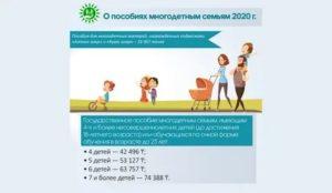 Льготы для многодетных семей в оренбургской области в 2019 году
