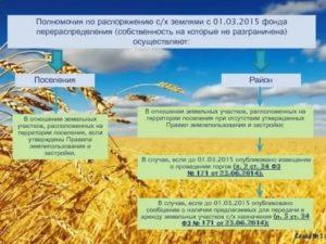 Полномочия по распоряжению земельными участками с 1 января 2020 года