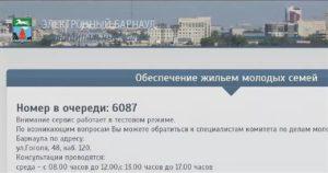 Очередь Молодая Семья Барнаул Посмотреть 2020
