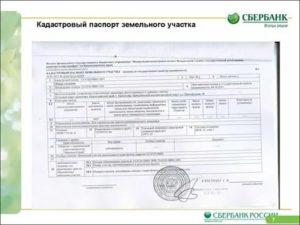 Кадастровый паспорт на дачный дом как получить в 2020 году