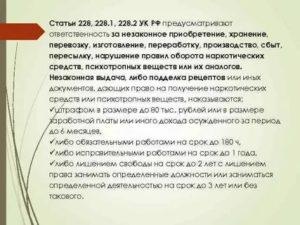 Наказание Статья 228ч3 2020 Года