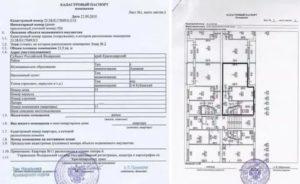 Могут ли кадастровые инженеры оформлять технические паспорта 2020
