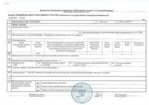 Кадастровый паспорт с 2020 года или выписка из егрн